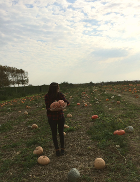 fall pumpkin picking new york