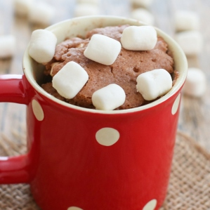 hot-chocolate-mug-cake-3